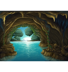 A cave and a water vector image vector image