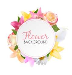 abstract frame with lily rose and other flowers vector image vector image