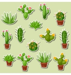 Cactuses and plants abstract natural seamless vector image