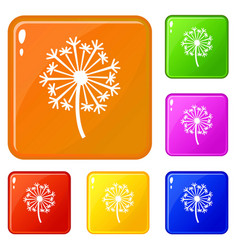 dandelion icons set color vector image
