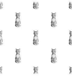 gray catanimals single icon in monochrome style vector image