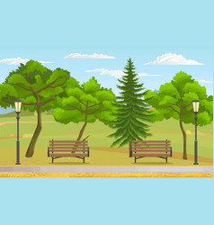public park at summer green nature wooden vector image