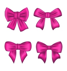 Collection Pink Silk Gift Bows Isolated vector image vector image