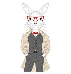 cute rabbit boy in elegant suit with coat glasses vector image