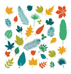silhouettes of leaves collection of leaves in vector image
