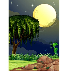 A view of the forest in the middle of the night vector