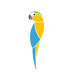 blue and yellow macaw parrot vector image