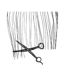 Hand drawn hairstyle Haircut vector image