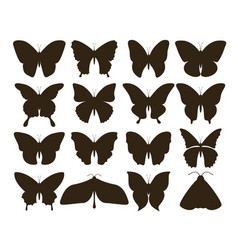 silhouette butterflies simple collection hand vector image