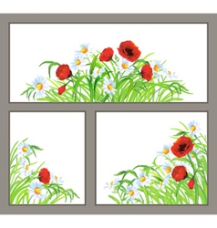Set summer flower poppy daisy isolated on white vector image vector image