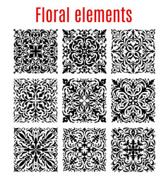 Floral borders and ornate elements vector