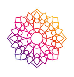 mandala motif floral decoration mystical gradient vector image