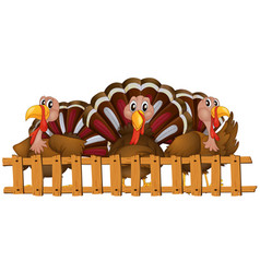 three turkeys behind fence vector image