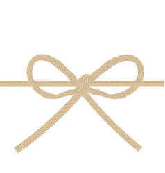 Twine string tied in a bow isolated on white vector