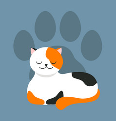 white with spots cat sleeping pet paw mark vector image