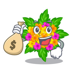 With money bag lantana flowers in the mascot pots vector