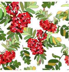 beautiful color seamless pattern with red berries vector image