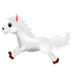 Cute white pony horse cartoon running vector image