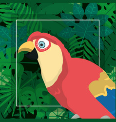 exotic bird cartoon vector image