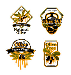 olive oil isolated label set with black fruit vector image vector image