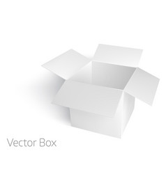 open white empty box mockup template vector image