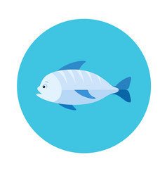 Sea fish flat icon vector