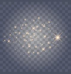 sparkles on transparent background vector image