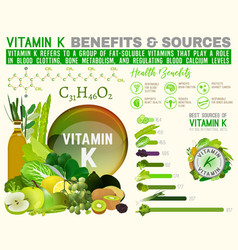 Vitamin k infographic vector