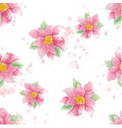 watercolor christmas poinsettia flower vector image