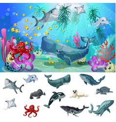 cartoon sea and ocean fauna concept vector image vector image