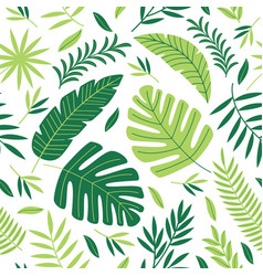 seamless pattern with tropical plants vector image vector image