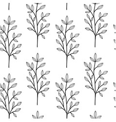 black on white herbs wild flowers vector image