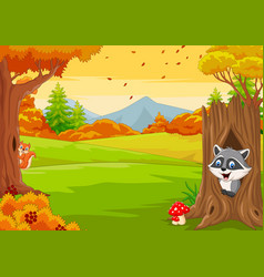 cartoon squirrel with raccoon in autumn forest vector image