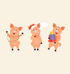 christmas pig set vector image