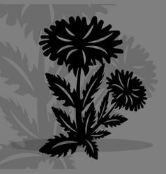 Dandilion silhouette vector
