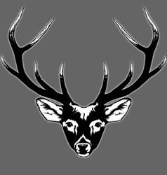 Deer vector
