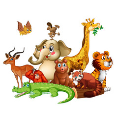 different types animals on white background vector image