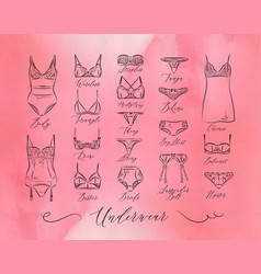 underwear classic icons pink vector image