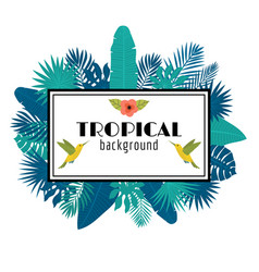 tropical leaves background summer design square vector image vector image