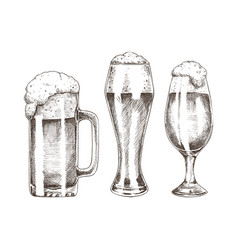 beer goblets collection isolated on white backdrop vector image
