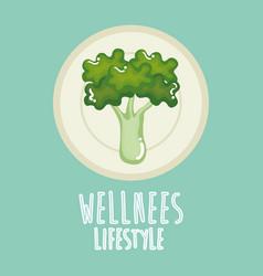 Broccoli vegetable wellness lifestyle vector