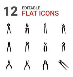 pliers icons vector image