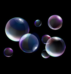 realistic soap bubbles with vector image