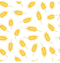 seamless wheat or rye pattern vector image
