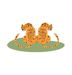 Wild leopards felines beast animals vector