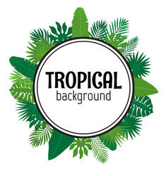 tropical leaves background summer design vector image vector image