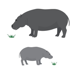 Big and little hippo vector image