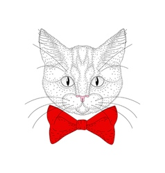 cute cat portrait Hand drawn hipster kitty head vector image