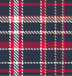 tartan fabric vector image