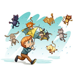 A rain with cats and dogs vector
